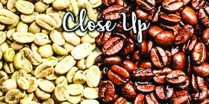 12-CloseUp-new