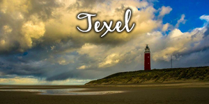 15-Texel