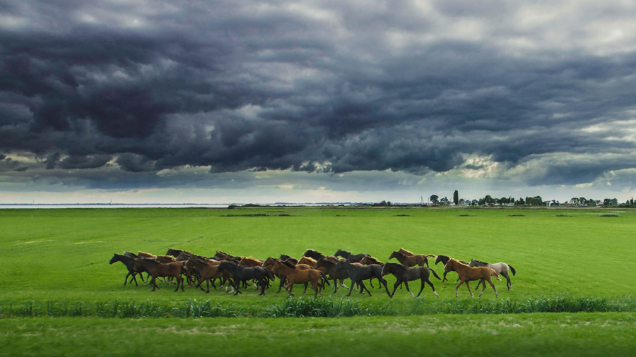 Riders in the storm - Marken
