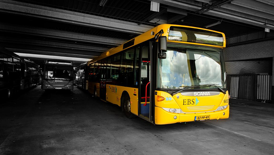 Bus-Geel Puremerend
